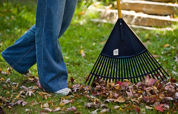 Sweep the Leaves Elsewhere